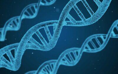 Progressi nella terapia genica dell'HLH